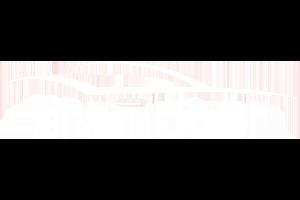 diseño · logo Aramotor