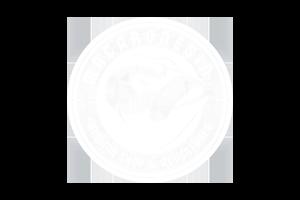 diseño · logo macaronesia