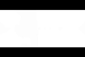 diseño · logo tortuga